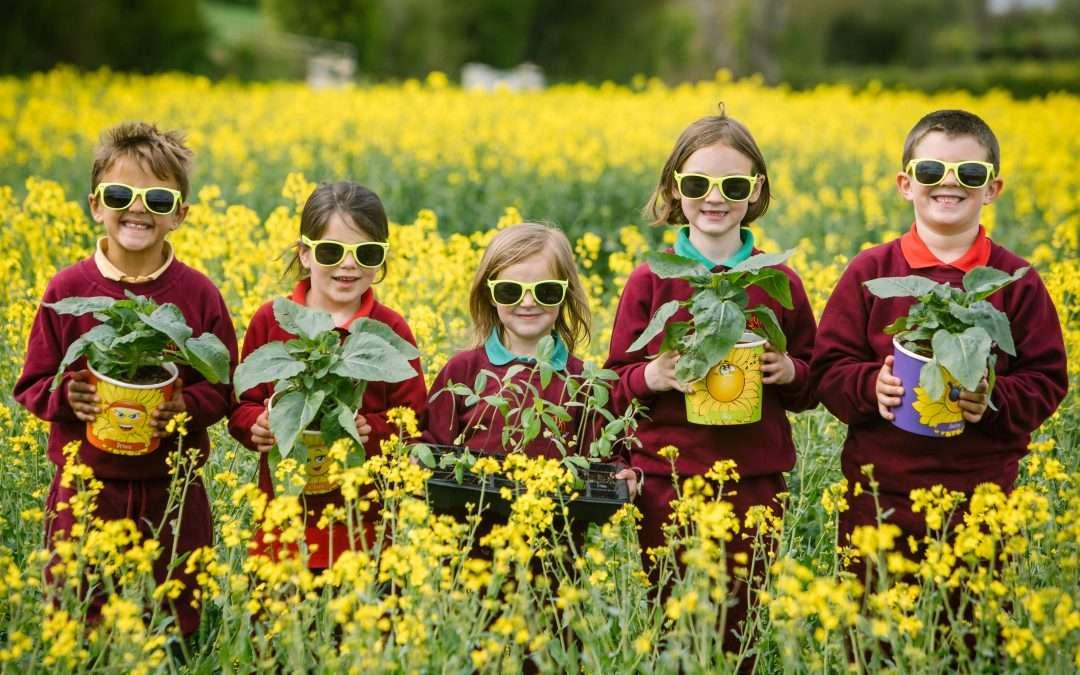 Cumbrian School's 'Summer of Kindness' inspired by Four Little Farm Boys