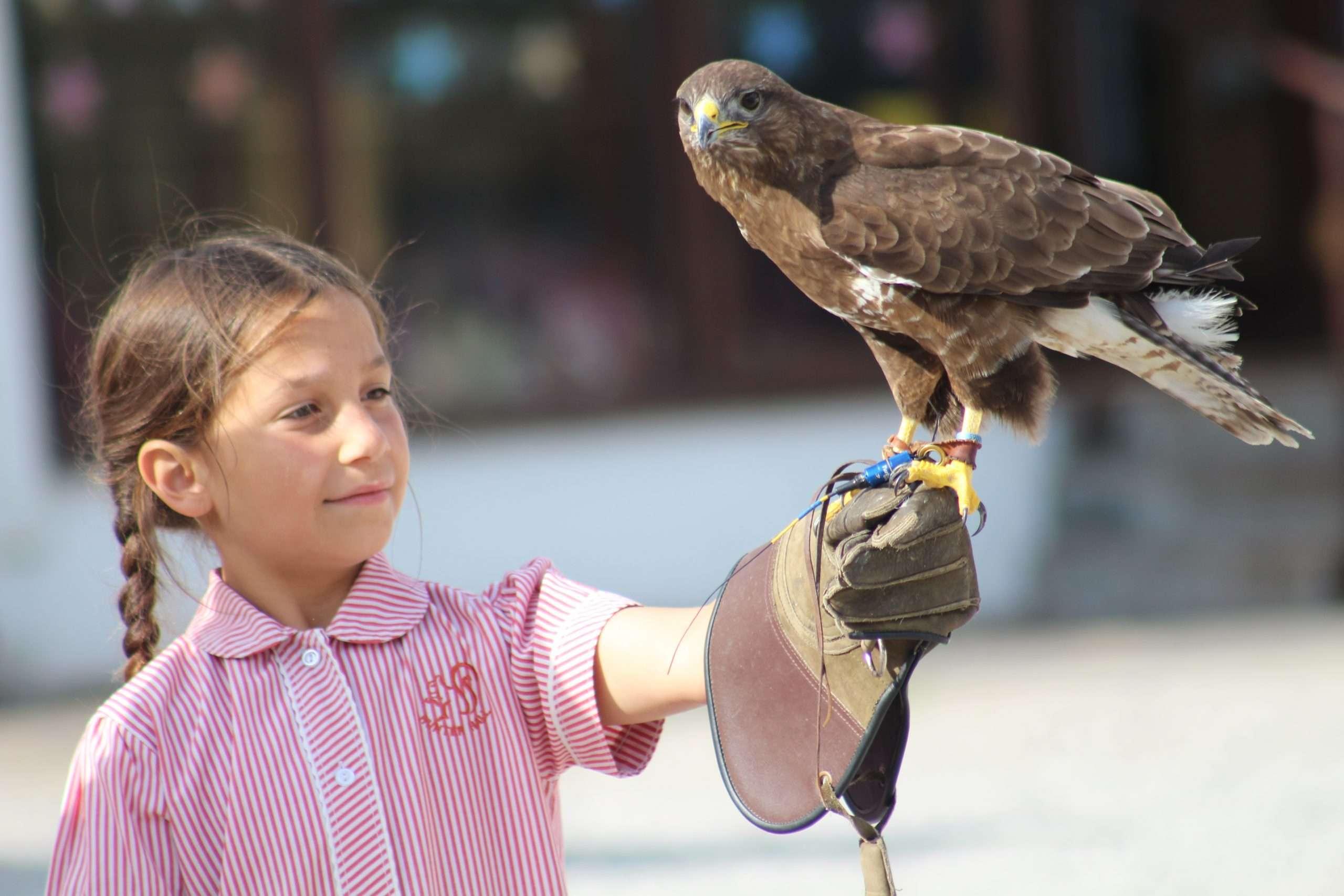 Hunter Hall School Newsletter 12.02.21
